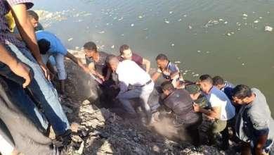 Photo of انتشال جثة غريق مجهولة الهوية بمياه الرياح التوفيقي بالقليوبية