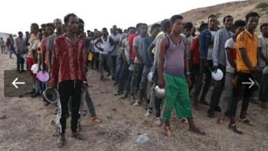 10 صور تجسد معاناة اللاجئين الاثيوبيين بمعسكرات النزوح بالسودان