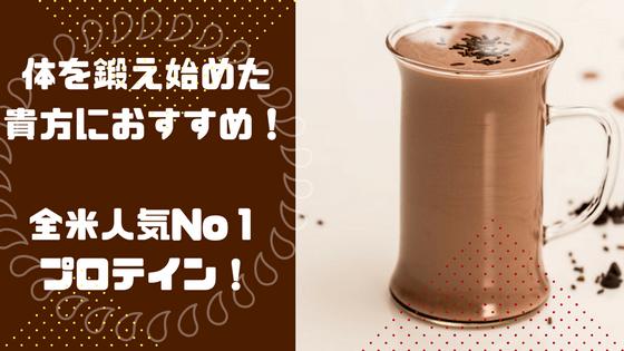 スタンダード 100 ム チョコレート ダブル リッチ ニュートリション ホエイ ゴールド オプティマ