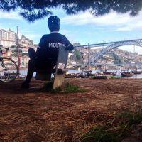 o Porto é um privilégio