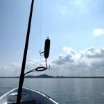 浜名湖の夏!といえばチヌトップでしょ~!行ってきました~!その2