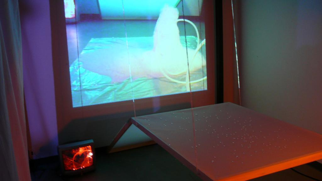 Image 08, The Bubble Project (Detail), Project X Installation Series, Naccarato, Montreal, QC, 2007