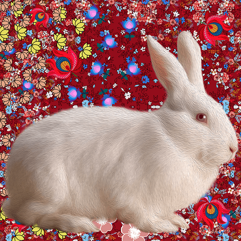 white.Rabbit (day 02), NFT / Print series, naccarato, 2021
