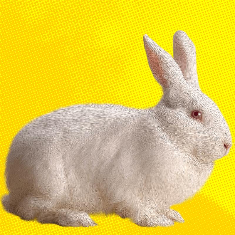 white.Rabbit (day 05), NFT / Print series, naccarato, 2021