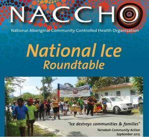 NACCHO ICE RT