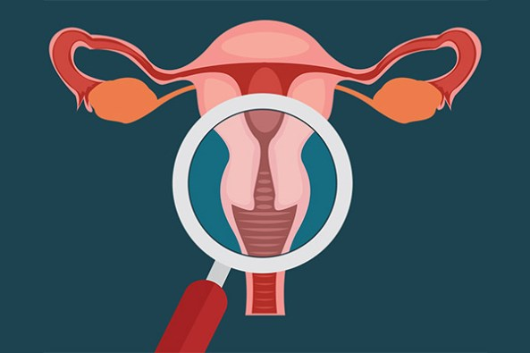 vector image of microscope over female reproductive organs