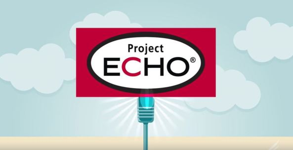 banner, vector sign text 'Project ECHO'