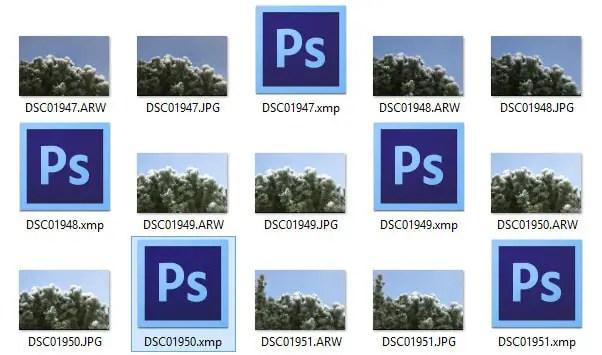 XMP-Sidecar Dateien mit RAW- und JPEG-Fotos im Dateisystem