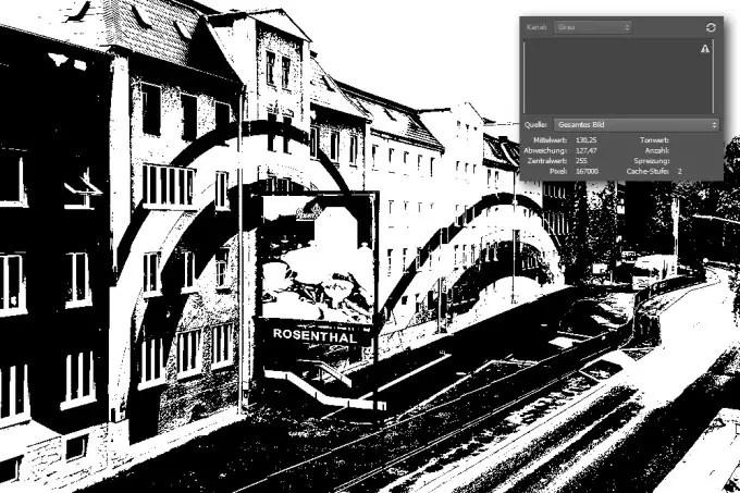 Ein Foto mit 1-Bit Bit-Tiefe