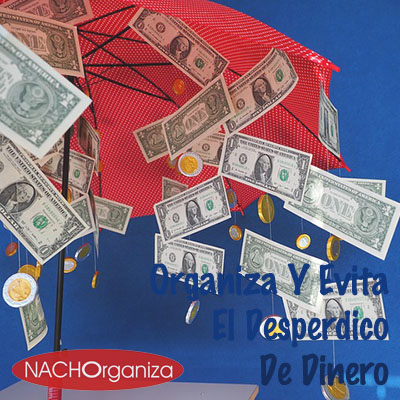 Organiza Y Evita El Desperdicio De Dinero
