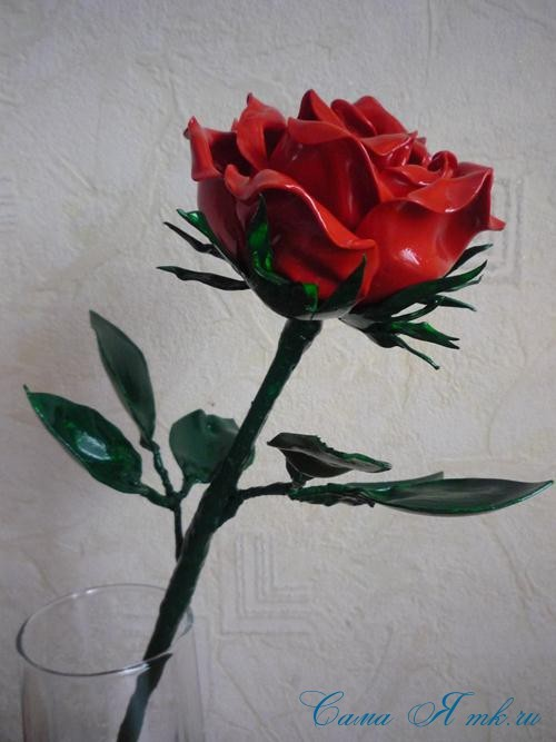 Hoa hồng tươi tốt
