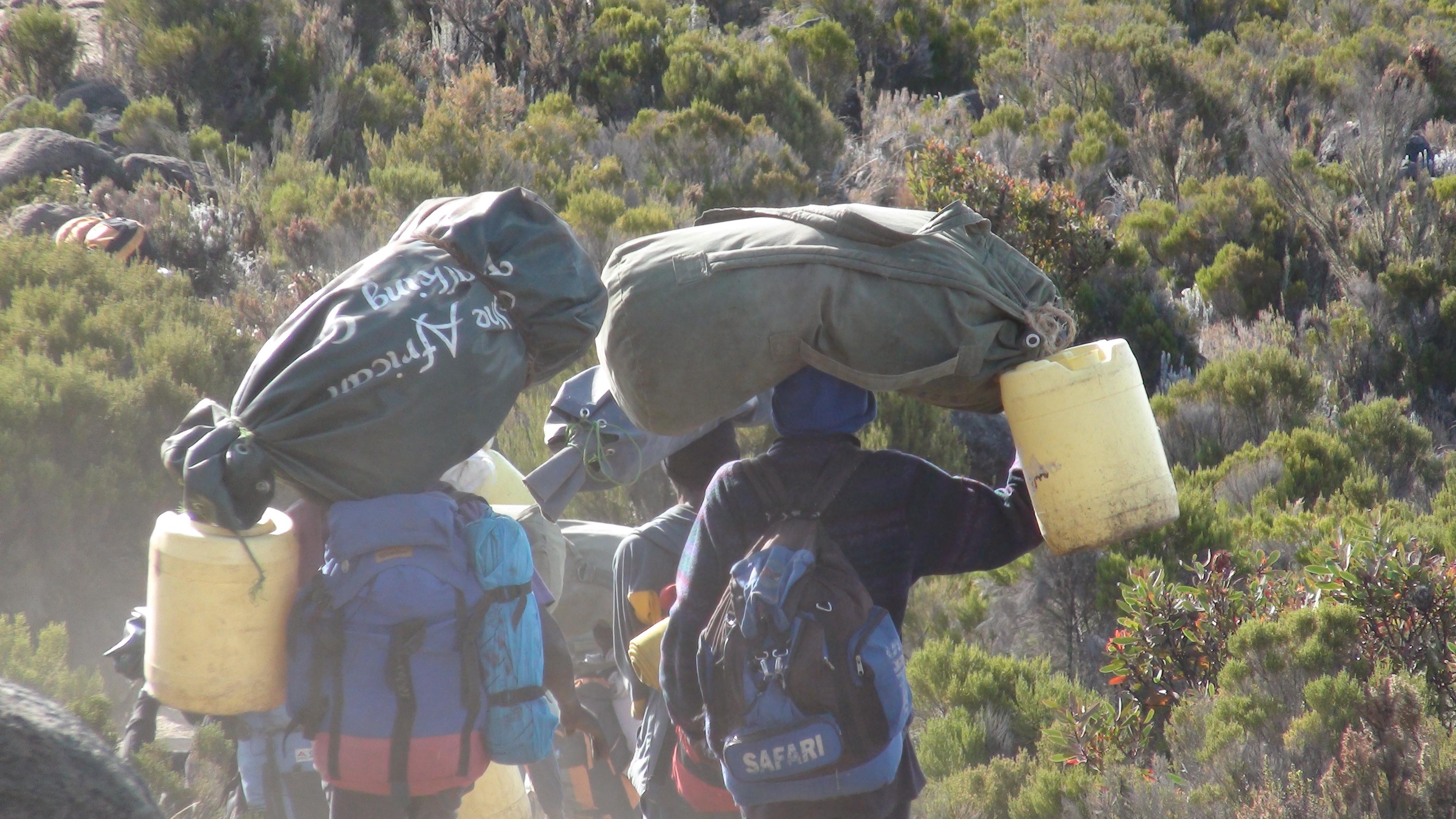Porters heading down Kilimanjaro