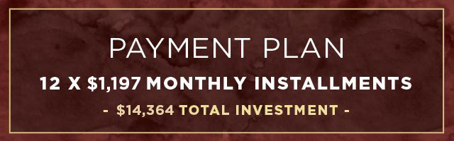 12-month vip private coaching payment plan