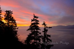 #345 Vancouver Sunset _NAD0619