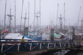 Fog at Fisherman's Wharf