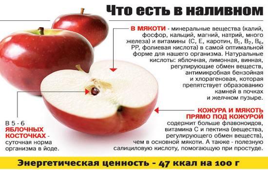Разгрузочный день на яблоках дополняем кефиром творогом гречкой и другими диетическими продуктами