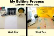 Blog - Editing Process Week 2