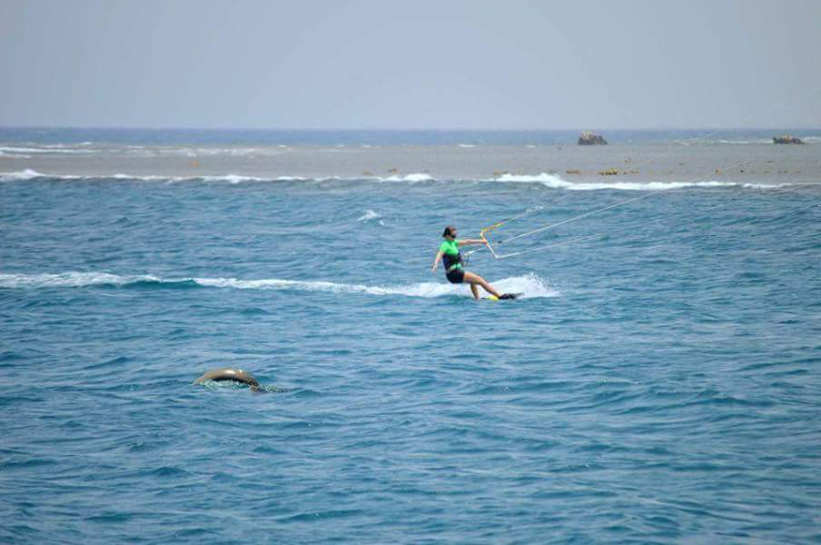 Kitesurfing With A Dugong In Marsa Alam
