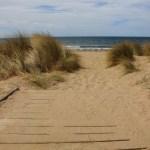 Dünen am Fishermans Beach