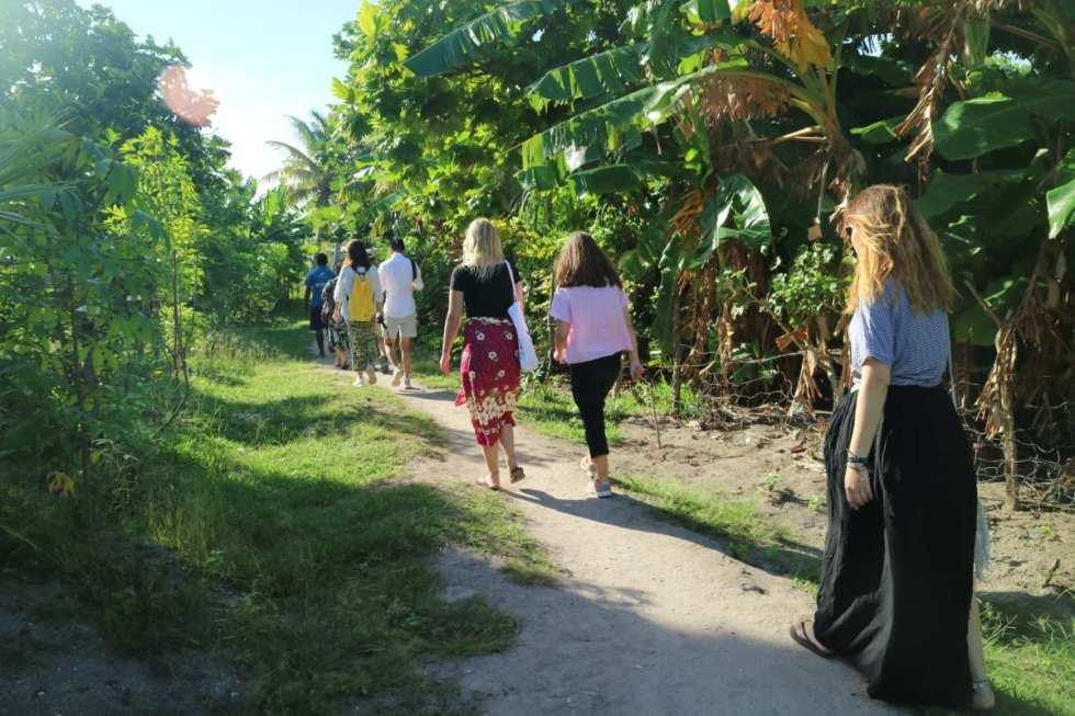 Way from school to the village near Blue lagoon resort, fiji
