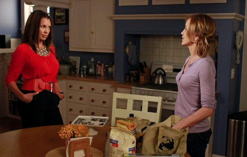 4ef7d-desperate-housewives-8x19-b