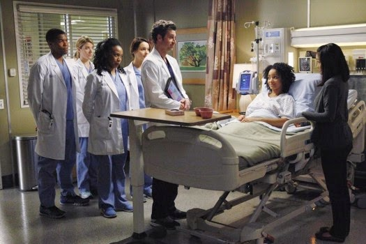 f7e8e-greys-anatomy-10x20-1-525x350