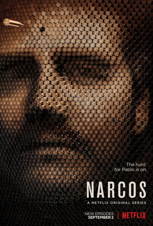 30507-narcos_ver12_xlg