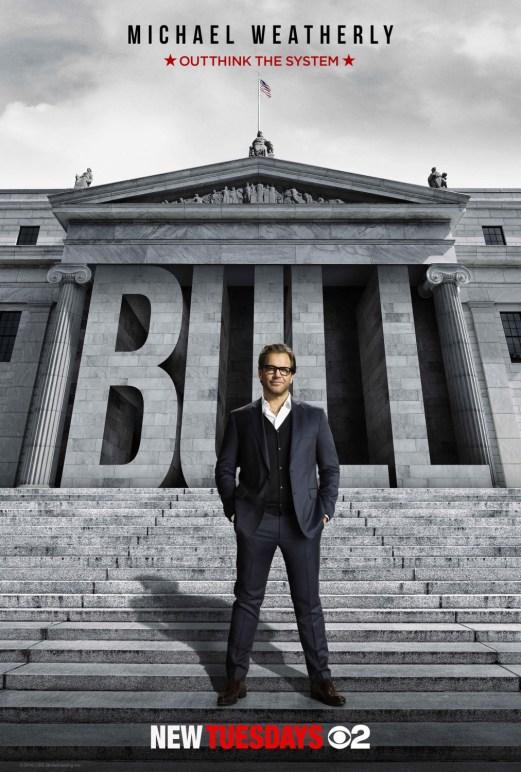 97340-bull
