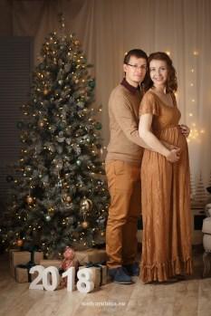 Новогодняя фотосессия 2018, пара, беременность