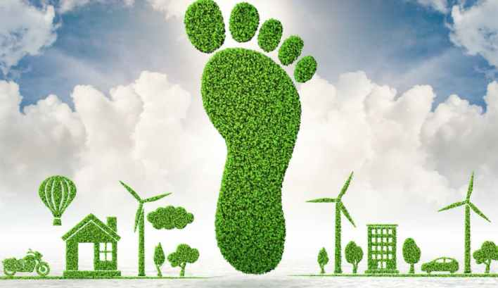 how can we reduce the carbon footprint in the logistics area of our company? | naeco