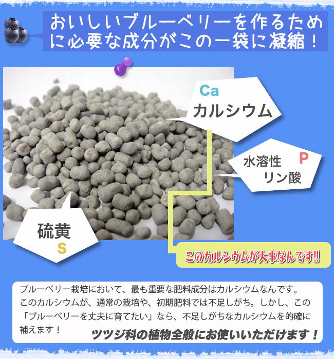 bb_karu02.jpg