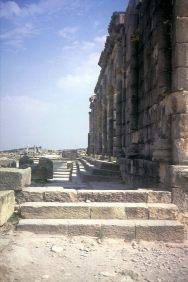 Die Basilika, das antike Senats- und Gerichtsgebäude von Volubilis.