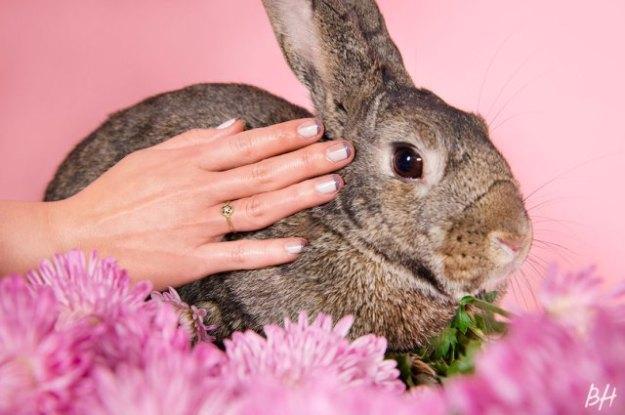 bunny-nails-2