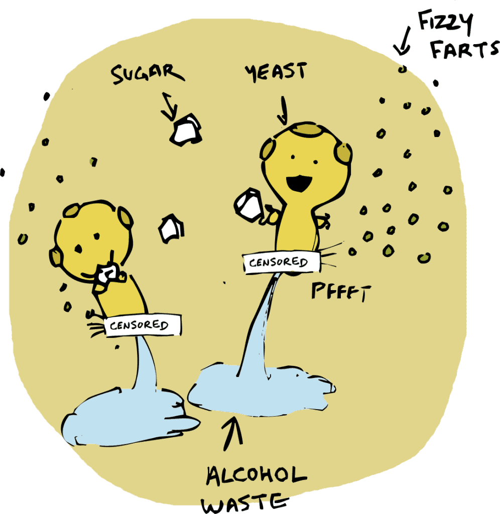 alcohol and yeast
