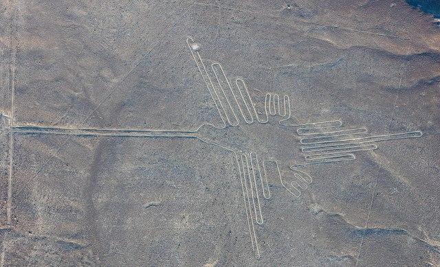 Nazca Çizgileri kuş