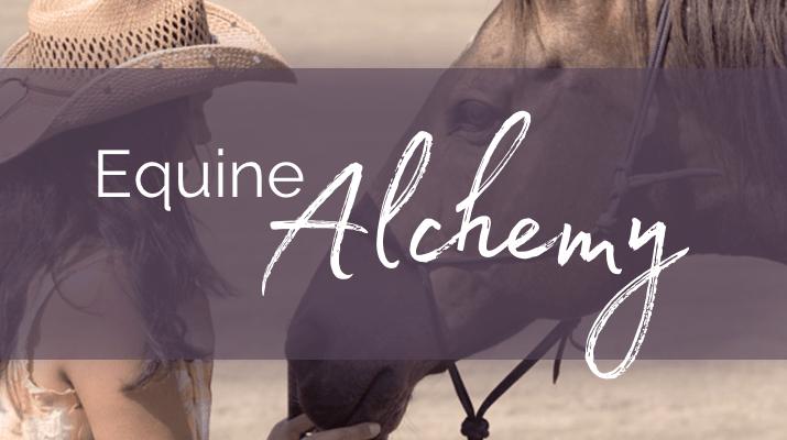 Equine Alchemy