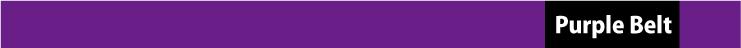 紫帯取得者
