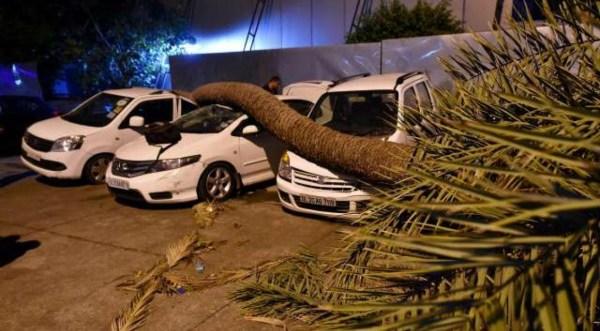 Several people killed as storm, rain hit UP, AP, WB & Delhi-NCR