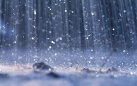 Heavy rain to lash Nagaland
