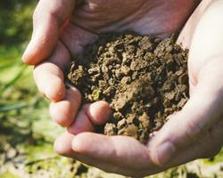 佐久市の農地転用 豊富な実績に基づいた高い取得率