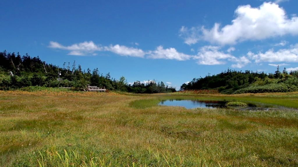 Tsugaike highland in hakuba, nagano
