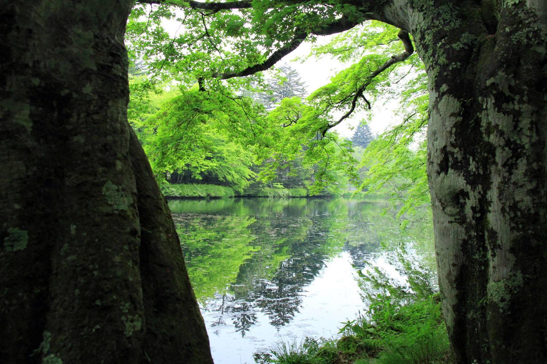 Kumobaike in karuizawa, nagano