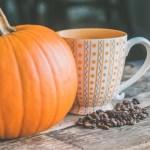 離乳食に大活躍のかぼちゃ!いつから食べられる?下ごしらえと保存方法