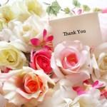 母の日のプレゼントにカーネーション以外の花で感謝の気持ちを伝えよう!