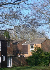 Photograph of Colt Stead neighbourhood