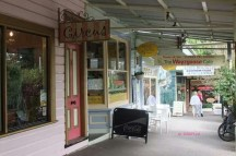 Blue Mountains - More Shops in Leura