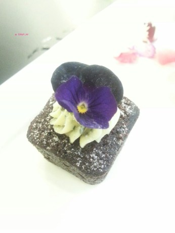 Brownie with peppermint cream cheese swirl and a violet flower