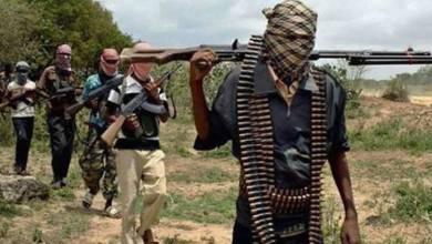 Photo of Bandits launch fresh attack on Zamfara village, eight persons killed