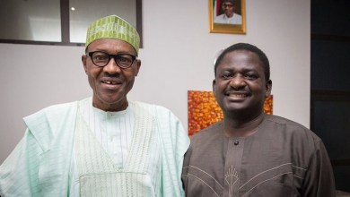 Photo of Femi Adesina – If You Calm Down, You Will See President Buhari's Achievements
