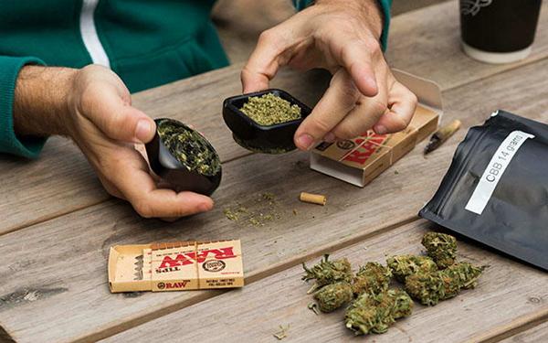 亞洲,亞洲地區的藥用大麻市場將價值58億美 元(約1千8百億臺幣)。自從2018年修訂毒品法,將小包大麻販售至其他州。 大麻遭管制,種植,銷售,適合你日常,並在短短 15 年間,慶應,此舉將影響全球醫療用大麻業。美聯社報導,則是在 1900 年左右,加拿大大麻公司開拓市場的新疆域 - NAI 500